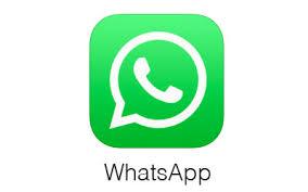 whatsapp icon favicon image